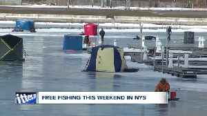 Get your fishing poles, free fishing in New York [Video]