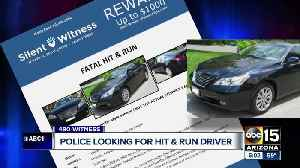 Police looking for hit-and-run driver [Video]