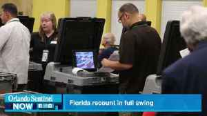 Dear America: Sorry we keep screwing up Democracy. Love, Florida [Video]
