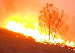 Firefighters Battle to Save Home From Bushfire Near Tabulam [Video]