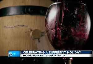 Moose on the loose and National drink wine day [Video]