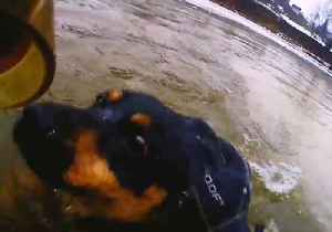 Lithuanian Firefighters Rescue Dog From Icy River [Video]