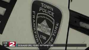 dog search in frankfort - One News Page [US] VIDEO