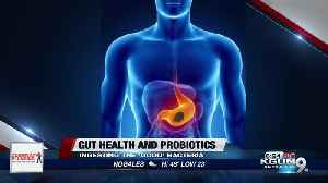 Are over-the-counter probiotic supplements worth it? [Video]