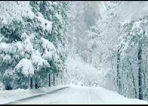 Thick Snow Turns Yosemite National Park Into Winter Wonderland [Video]