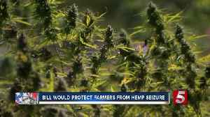 Bill would protect hemp farmers from law enforcement seizure [Video]