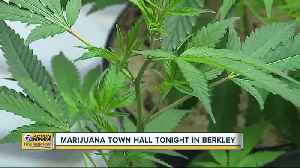 Berkley to hold town hall on marijuana [Video]
