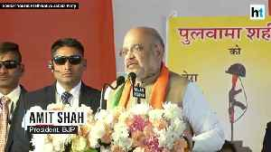 India is standing rock solid with the families of martyrs Amit Shah [Video]