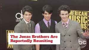 Great News For Jonas Brothers Fans [Video]