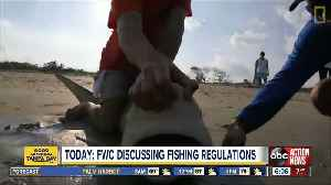 TODAY   FWC to discuss regulations for shark fishing [Video]