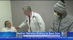 Mother Donates Kidney To Son [Video]