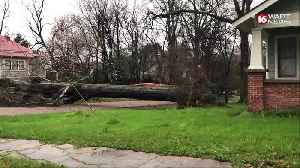 Tree falls in Olde Towne Clinton, knocking out power [Video]