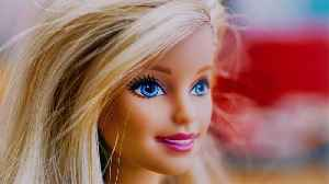 Barbie Teams Up With National Geographic for a New Line of Travel-Themed Dolls [Video]