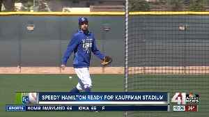 Hamilton brings extra edge to KC's outfield [Video]