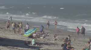 News video: Reeling back from red tide