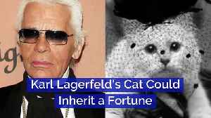 Karl Lagerfeld's Cat Could Inherit a Fortune [Video]