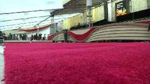 Red carpet rolled out ahead of the Oscars [Video]