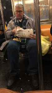 Man eats bag of french fries on subway [Video]