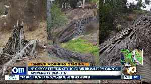 Neighbors petition city for more cleanup in fire-prone canyon [Video]