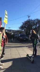 Oakland Teachers Picket for Higher Pay and School Resources [Video]