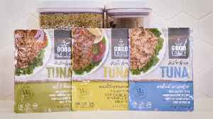 New Plant-Based Tuna Launches at Whole Foods Nationwide [Video]
