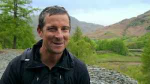 Why Is Bear Grylls In Trouble? [Video]