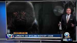 'Juvenile suspect' investigated in Palm Beach Zoo monkey theft [Video]
