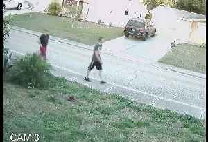 Surveillance Video: unknown suspects beat, rob teen walking home from Gulf High School in Pasco County [Video]