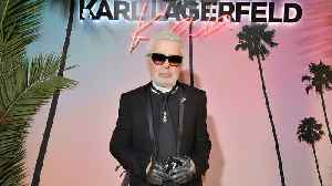 Karl Lagerfeld's Cat Could Inherit Millions [Video]