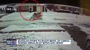 Cereal-eating bandit breaks into a home in Westland, caught on video [Video]