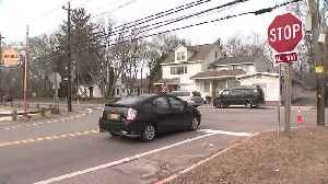 Families Speak Out After Long Island Fatal Crash Kills Couple, High-Speed Driver [Video]