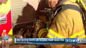 Firefighters revive cat with oxygen after house fire [Video]