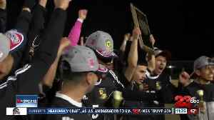 Three area soccer teams clinched valley championships on Friday [Video]