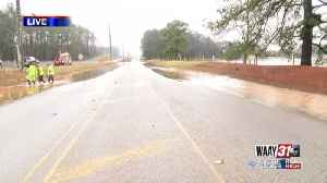 Cow Pasture in Falkville Flooded [Video]
