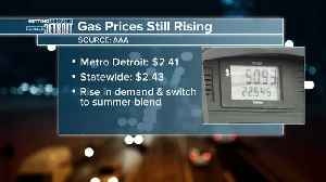Gas prices continue to rise in metro Detroit and Michigan [Video]