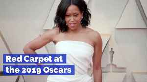 The 2019 Oscars Red Carpet Highlights [Video]