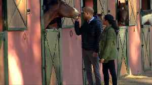 Harry and Meghan visit equine therapy centre in Morocco [Video]