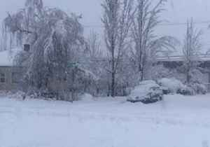 Snowstorm Damages Trees, Power Lines in Western Oregon [Video]