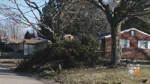 Thousands Of Homes, Businesses Remain In The Dark After Wind Storm [Video]