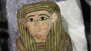 6 Mummy Body Parts Hidden And Discovered In Luggage In Egypt [Video]