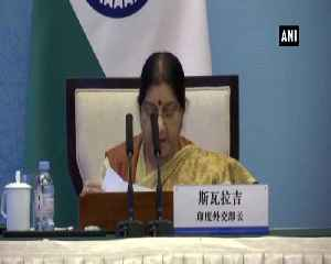 EAM Swaraj raises Pulwama terror attack in RIC Foreign Ministers meet in Wuzhen [Video]