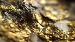 Gold Fields CEO On Working With South African Regulators On Gold Mining [Video]