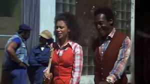 A Piece of the Action Movie (1977) - Sidney Poitier, Bill Cosby [Video]