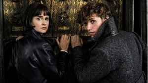 'Fantastic Beasts 3': Warner Bros. Boss Has Plans For Better Sequel [Video]