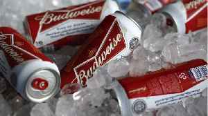 Anheuser-Busch InBev To Offer More Low And No Alcohol Beers [Video]