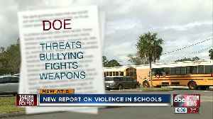 Numbers show FL school violence is trending down, local parents still concerned [Video]