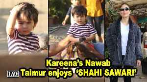 Kareena's Nawab Taimur enjoys his 'SHAHI SAWARI' | Horse Riding [Video]