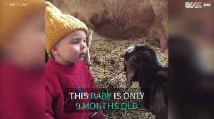 Nine-month-old baby helps care for newborn goats [Video]