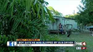 Elementary student says Lee County bus driver slapped him in the face [Video]