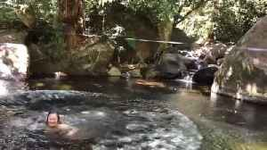 Female Slackliner Faceplants While Balancing on Rope Over Water [Video]
